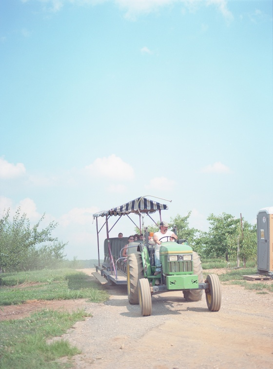 Baugher's Farm by Film Photographer Stacy Bauer